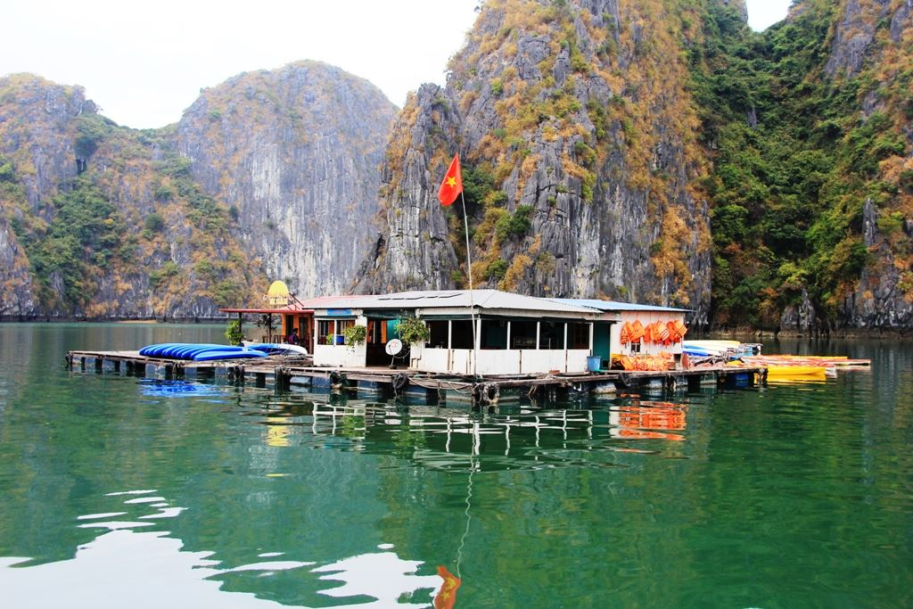 1 day boat trip and a night on floating home